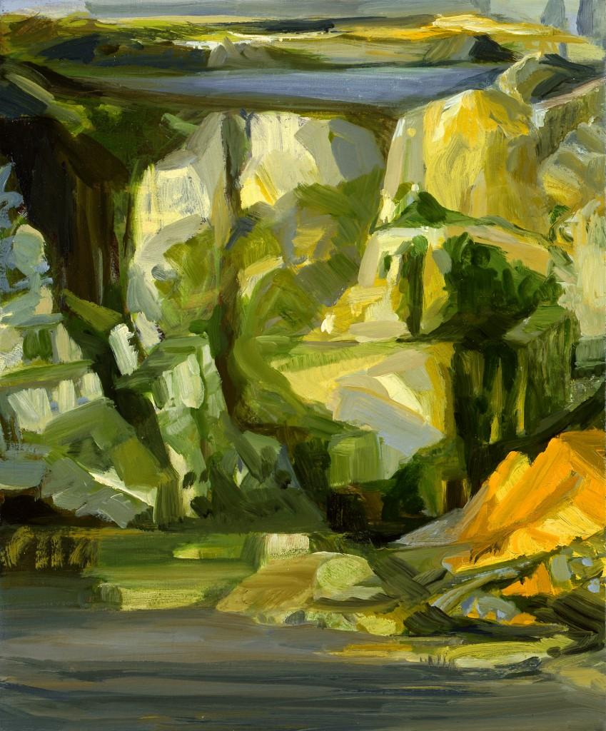 n°5 Paysage - Huile sur Toile - 38 x 46 - 2009 - Col. part.