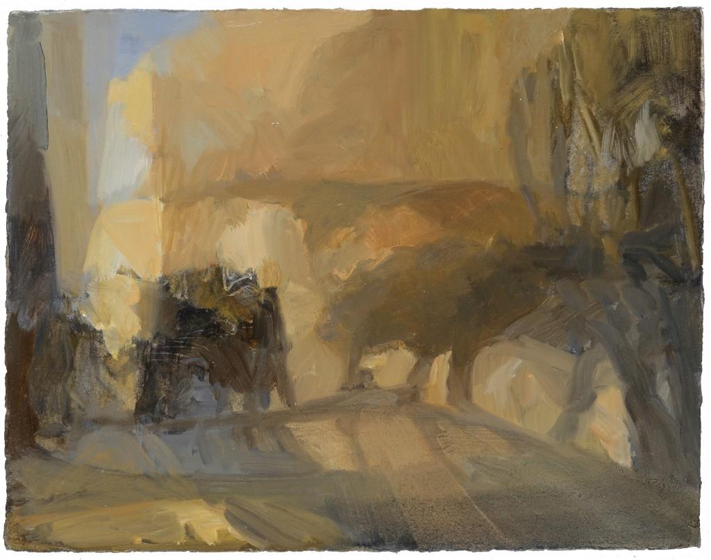 Nid de poussière - Paysage - Huile - 44 x 34 - 2012